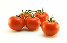 Fresh Vine Tomatoes - Product Photography